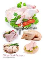 پخش عمده مرغ کشتار روز هر کیلو 400زیر قیمت کشتارگا
