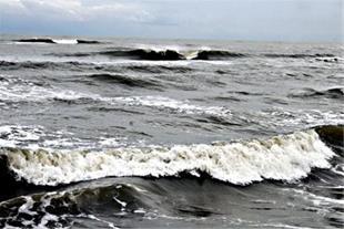 زمین ساحلی 3 هکتاری مناسب جهت ویلاسازی سنددار