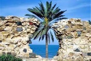 مجری اصلی تور قشم ( گردشگری صالح )