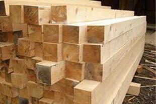 توزیع چوب راش ، توسکا و ...