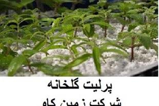خرید فروش پرلیت perlite  زمین کاو  در گلخانه