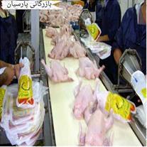 فروش عمده مرغ روز و منجمد جهت داخل و صادرات