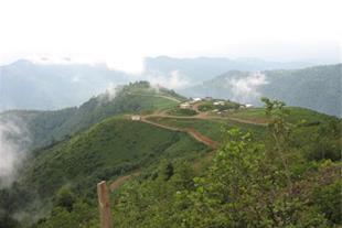 1009 متر زمین در رحیم آباد رودسر با چشم انداز رود