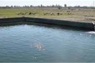 فروش مزرعه پرورش ماهی قزل آلا در قزوین منطقه الموت