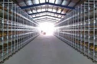 فروش ویژه مرغداری تخمگذار