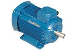 الکتروموتور موتوژن 3 فاز صنعتی 0.75 کیلووات (1 HP)