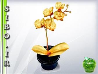 خرید گلدان ارکیده طلا - 1