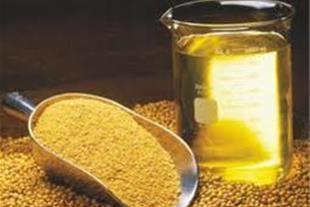 فروش انواع کنجد ایرانی و خارجی