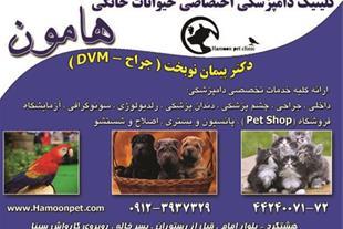بیمارستان دامپزشکی هامون در  استان البرز مجهزترین
