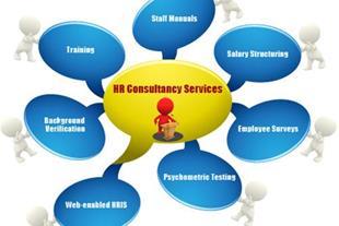 مشاوره مدیریت منابع انسانی/شرکت تدبیرسازان اکسیر