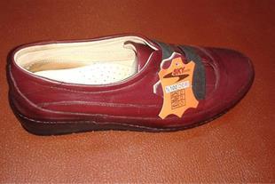 تولیدی کفش اسکای