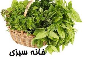 انواع سبزی به هیئات ومساجد=قیمت مناسب،خدمات رایگان