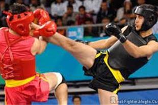 آموزش تخصصی مبارزات ووشو(ساندا)