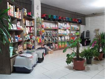 مرکز جراحی حیوانات و کلینیک دامپزشکی در غرب تهران - 1