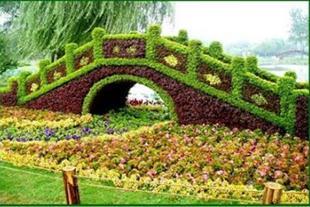 تولید گل و گیاه زینتی و نهال های مثمر و غیرمثمر