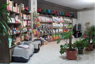 مرکز جراحی حیوانات و کلینیک دامپزشکی در غرب تهران