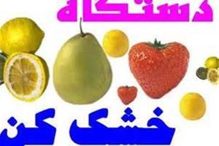 میوه خشک سبزی خشک