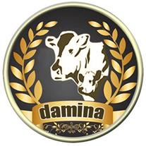 دامینا