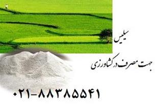 سیلیس جهت مصرف در کشاورزی