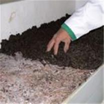 خاک پوششی جهت تولید قارچ 09199762163 - 1