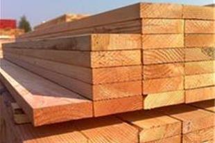 فروش چوب نراد روسی