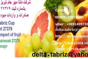 صادرات و واردات موادغذایی و میوه جات