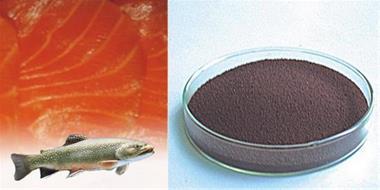 رنگدانه استازانتین خوراکی ماهی  وتخم میگوی ارتمیا - 1
