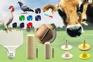 فروش تگ های rfid مخصوص حیوانات