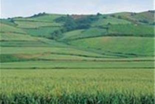 فروش زمین در نوشهر وروستاهای نوشهر