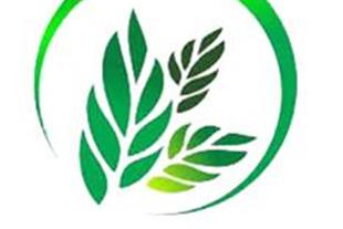 شرکت سبزکاران دزفول