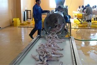 فروش کارخانه بسته بندی و فرآوری محصولات گوشتی