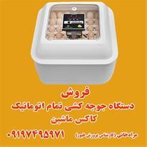 فروش انواع ماشین های جوجه کشی خانگی در استان زنجان