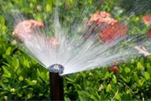 طراحی و اجرای آبیاری تحت فشار( قطره ای ، بارانی)