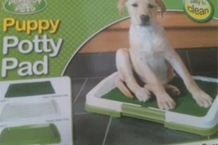 سینی آموزش حیوانات خانگی