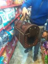 فروش باکس چمدانی حیوانات خانگی