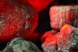 پخش و فروش زغال کبابی (ذغال ممتاز)