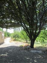 باغچه چهار دیوار 2100