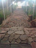 اجاره ویلا باغ مبله کامل به صورت روزانه درماهان