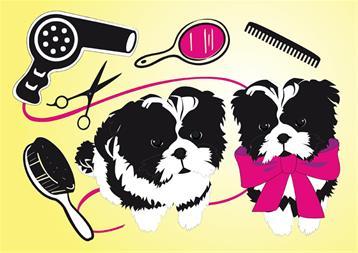 آرایش و شستشوی سگ و گربه - 1
