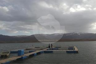 ساخت قفس پرورش ماهی cage fish in iran