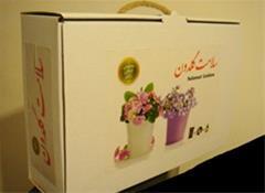 پکیج گل و گیهان زینتی - 1