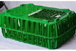 فروش سبد حمل مرغ زنده
