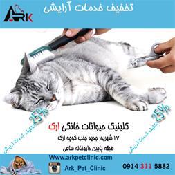 کلینیک حیوانات خانگی تبریز - 1