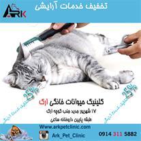 کلینیک حیوانات خانگی تبریز