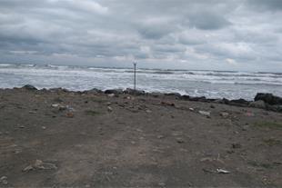 زمین ساحلی املاک رضاپور
