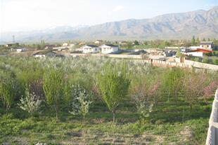 فروش باغ 1500 متری در شهر آبسرد