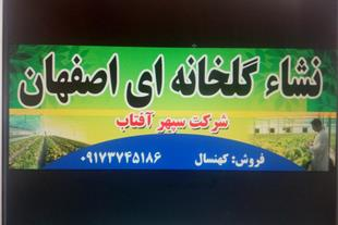 نمایندگی فروش انواع نشاء گلخانه ای اصفهان-شهرضا