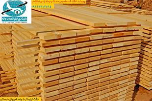 فروش چوب نراد و صنوبر رشت