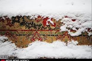 قالیشویی پازیریک