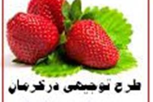 طرحهای تولیدی دراستان کرمان...